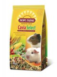 Hope_Farms_Cavia_Select